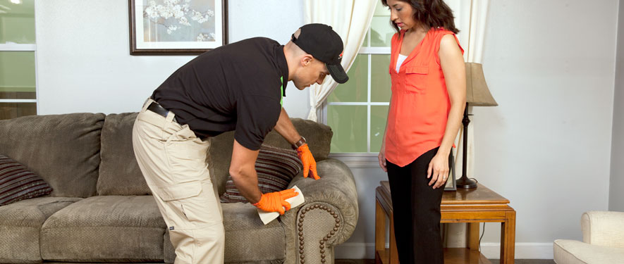 Arlington, TX carpet upholstery cleaning